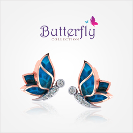 butterfly-collection